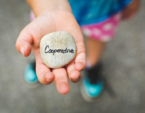 holding a stone saying cooperative