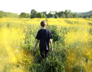 Walking in a yellow field